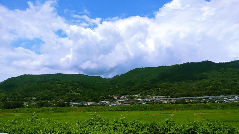 開成町の長閑な風景